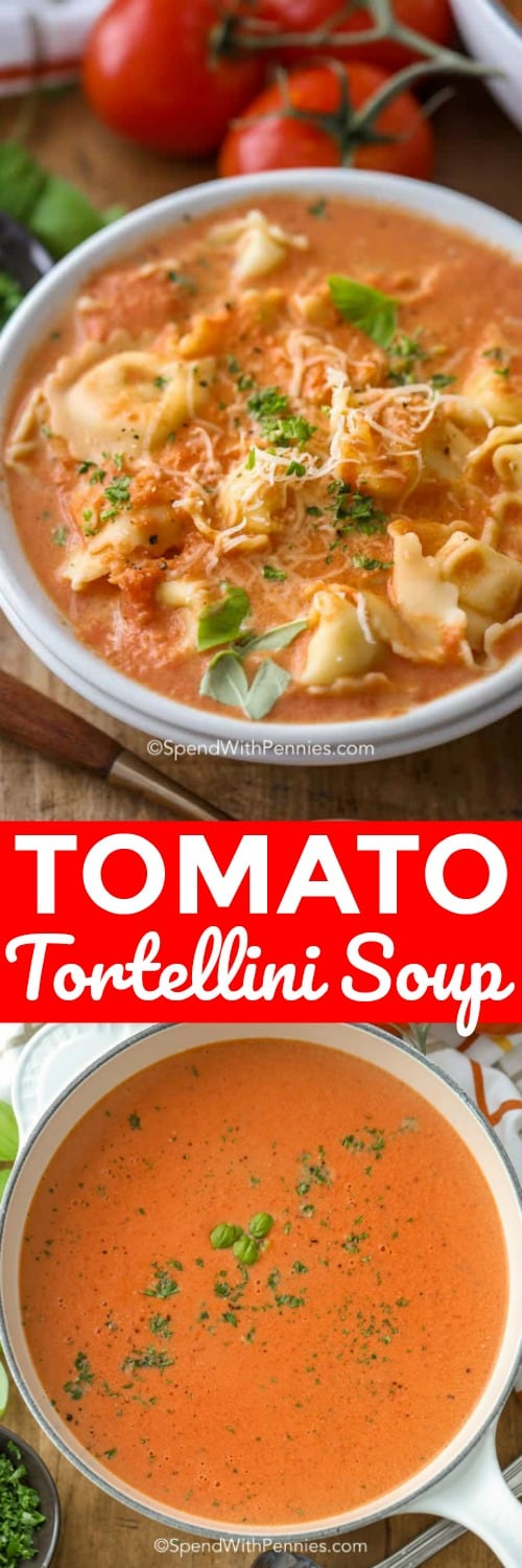 Tomato tortellini soup is an easy 15 minute recipe that is perfect for busy weeknights. This easy creamy tomato soup recipe is made with canned tomatoes for a quick meal! #spendwithpennies #tortellini #tomatotortellinisoup #soup #tomatosoup #tortellinisoup