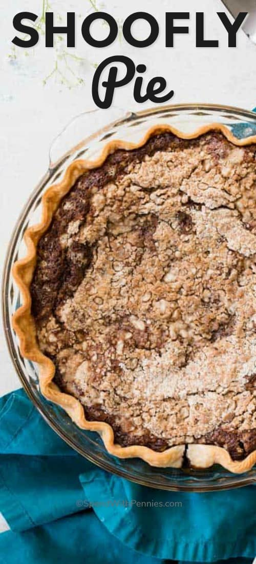 Shoofly Pie made from scratch! This easy dessert recipe is so good! #amishrecipe #pierecipe #dessertrecipe #baking #shooflypie #spendwithpennies #shooflypierecipe