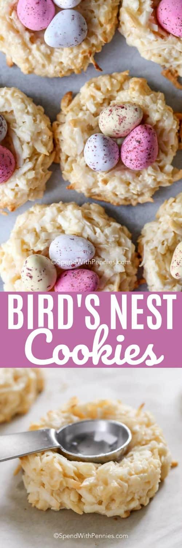 Birds Nest Cookies with wording