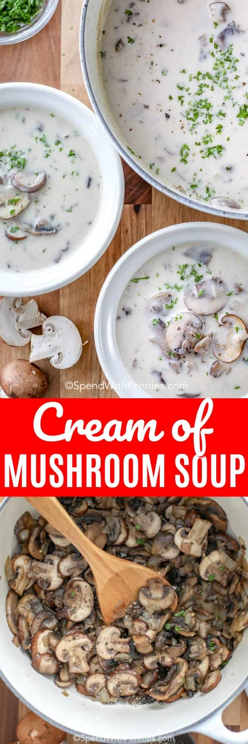 Homemade cream of mushroom soup is a great recipe to master! It is loaded with mushrooms and makes a great base for so many other recipes!  #spendwithpennies #creamofmushroomsoup #homemadesoup #lunch #creamysoup