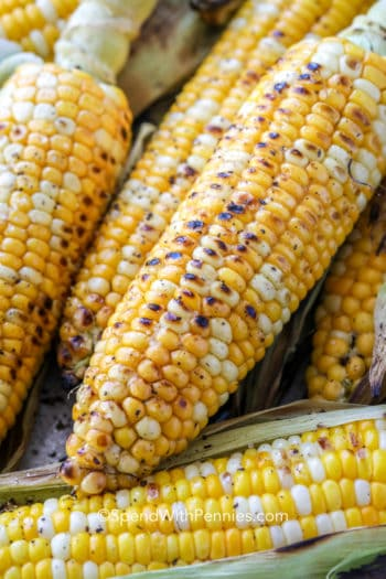 Grilled corn shown close up
