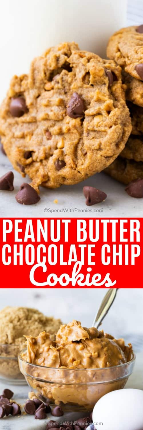 Nothing compares to a homemade chocolate chip cookie, except peanut butter chocolate chip cookies! This recipe takes the best of both cookies and combines them for this soft and flourless treat! #spendwithpennies #peanutbutterchocolatechipcookies #chocolatechipcookierecipe #cookies #glutenfree