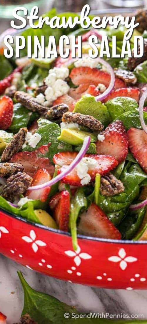 Strawberry spinach salad in a Red Bowl with a title