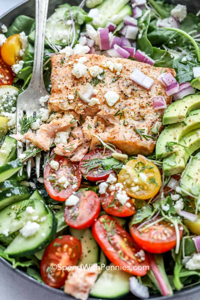Avocado Salmon Salad with salmon, tomatoes, cucumbers and cheese and a fork in the salad