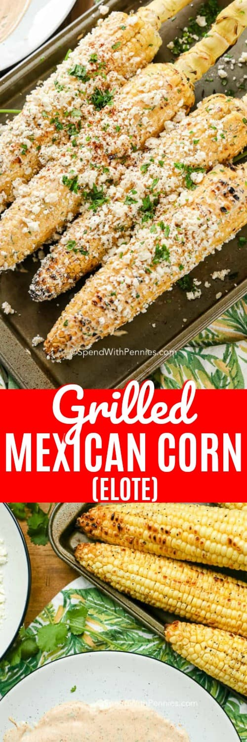 Grilled Mexican Corn on a baking tray, corn prepped for elote
