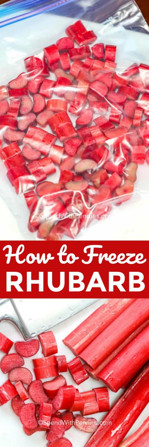 Want to know how to prepare rhubarb for freezing? Well, here it is! A handy guide on How to Freeze Rhubarb, filled with helpful tips and delicious recipes that you can now enjoy all year round! #spendwithpennies #howtofreezerhubarb #kitchentips #rhubarbrecipes #dessert