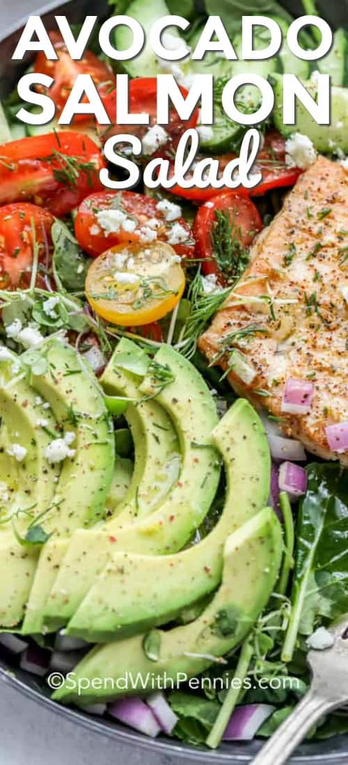 Avocado Salmon Salad close-up