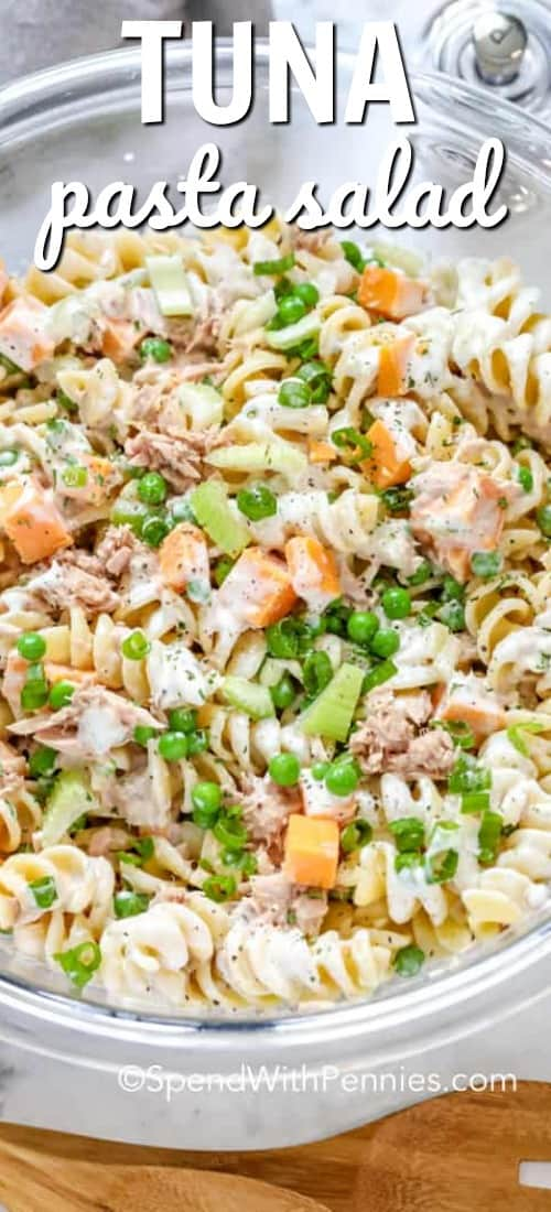I love this creamy tuna pasta salad recipe! Whether taking it to a potluck or enjoying at a barbecue it's fresh and light flavors are always a hit. With pickles, cheese, pea and of course tuna & pasta, it's the best summer side dish I've made! #spendwithpennies #tunapastasalad #pastasaladrecipe #summer #sidedish #30minmeal
