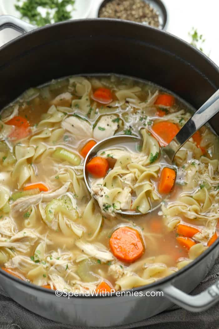 Chicken noodle soup being served out of a stock pot