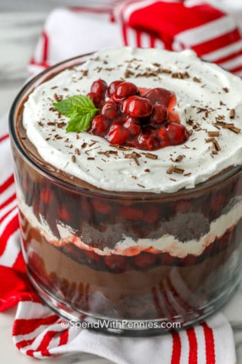 Black Forest trifle with mint and cherries on top