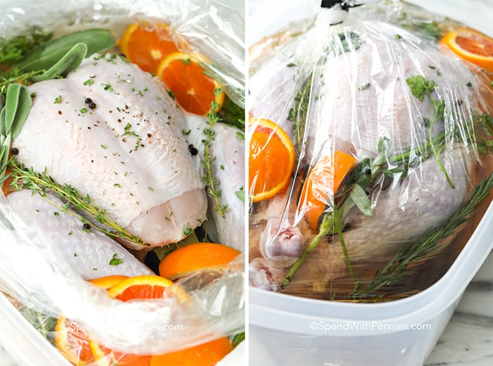 Raw turkey with turkey brine in a plastic bag open and closed
