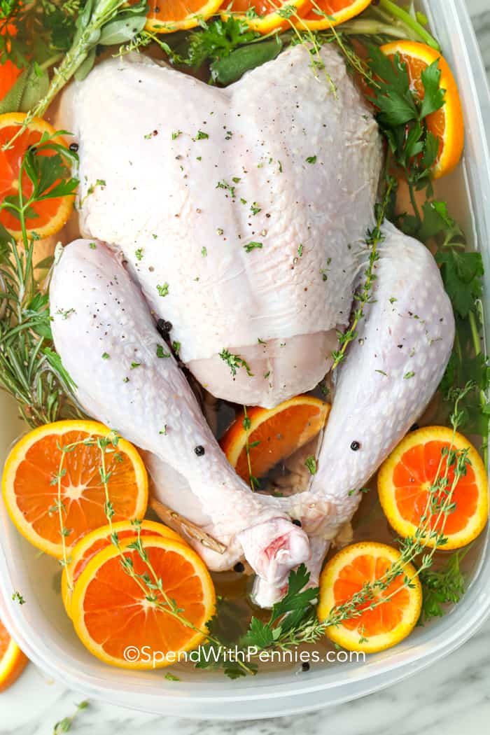 Easy Turkey Brine Extra Moist And Juicy Spend With Pennies