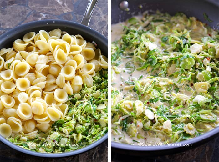 Orecchiette and brussel sprouts in a pan