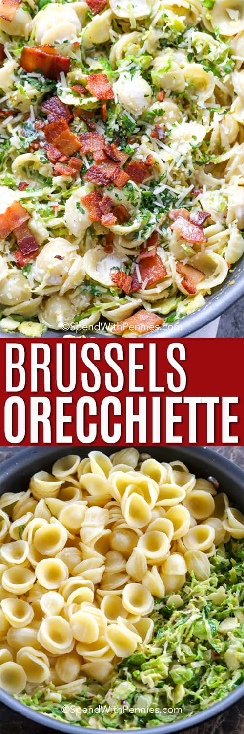 Orecchiette in a bowl with brussel sprouts and ingredients to make Orecchiette with brussel sprouts in a pot with a title