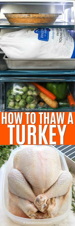 a turkey in the fridge, a whole turkey