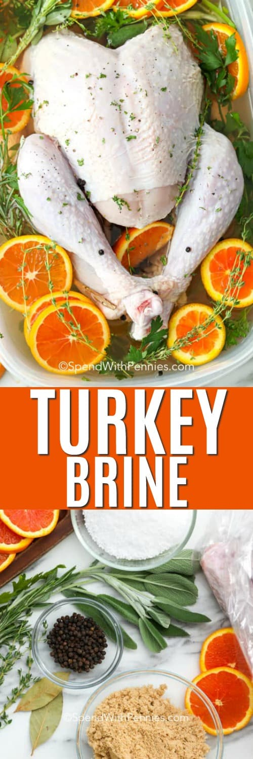 Turkey brine ingredients on a marble board and a turkey in a container with Brine and a title