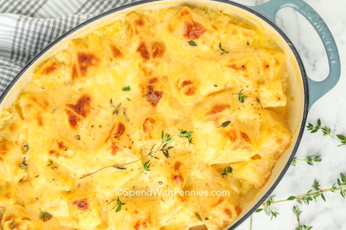 Overview of baked rutabaga gratin garnished with thyme.