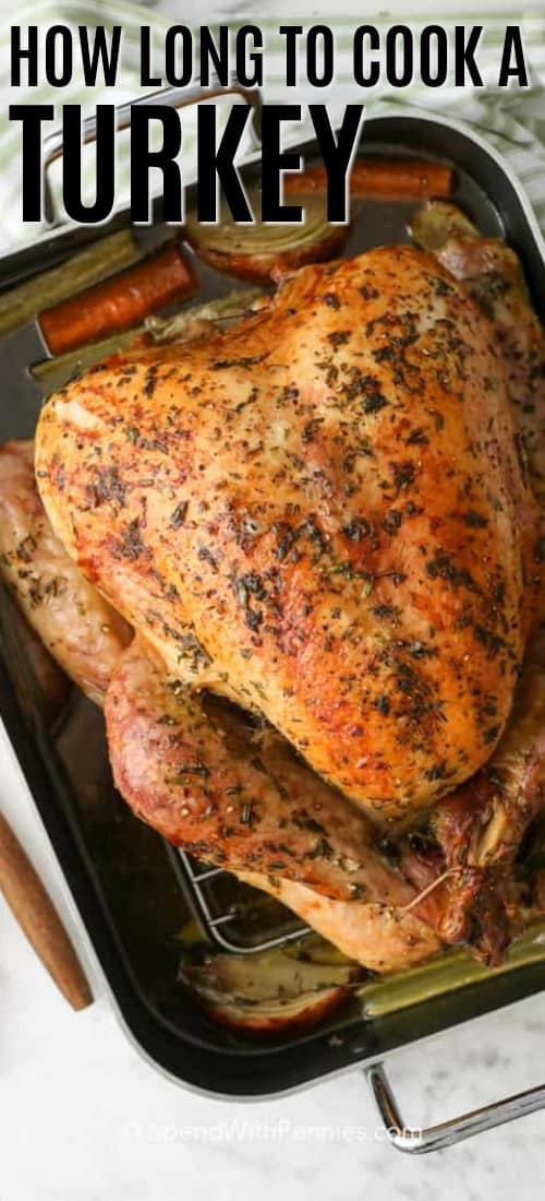 Overview of a roasted turkey in a roasting pan.