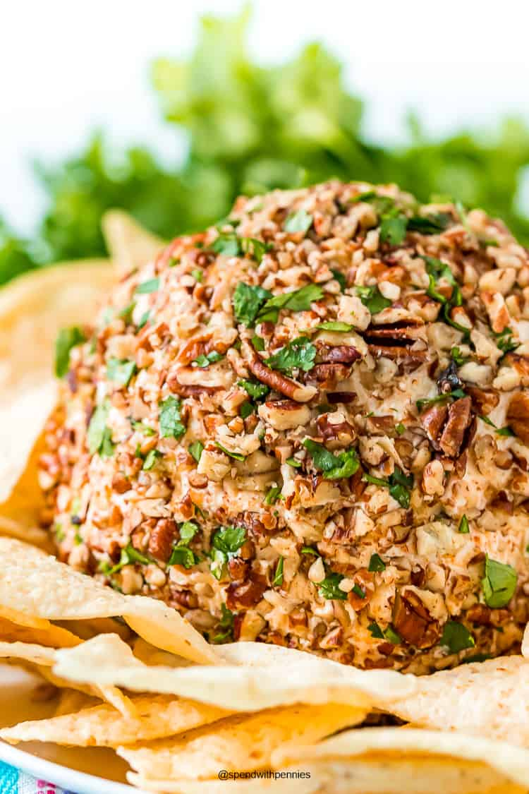 Cheese ball coated in chopped pecans and cilantro surrounded by tortilla chips.