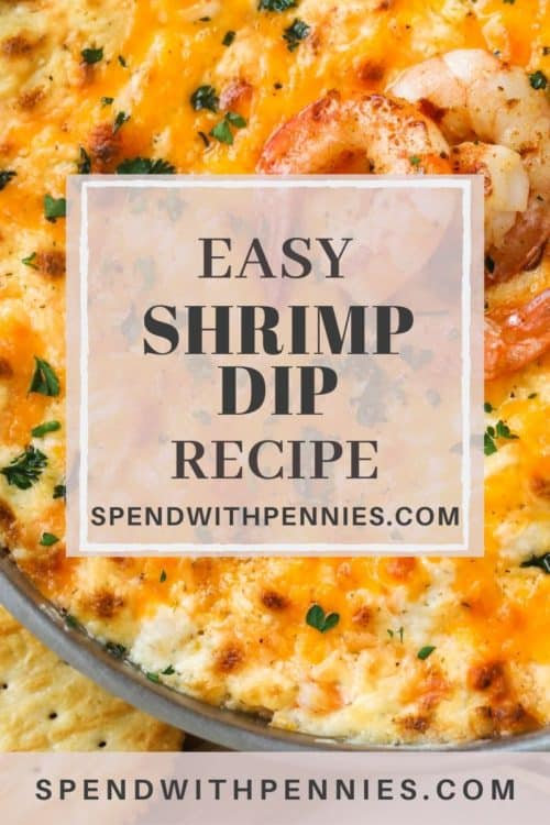 Close up of baked shrimp dip topped with whole shrimp and parsley.