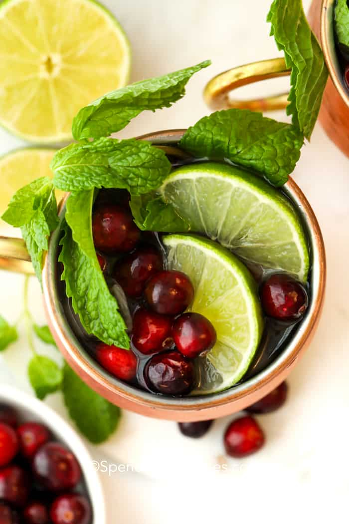 Overhead image of a cranberry Moscow mule garnished with a mint sprig, lime slices, and fresh cranberries.
