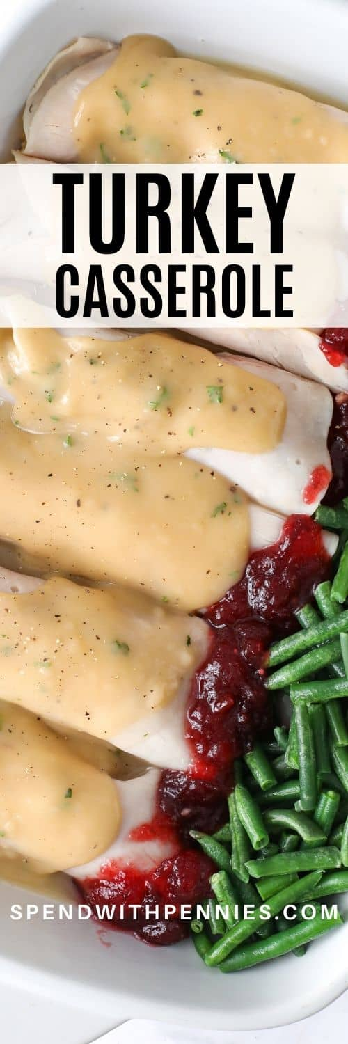 Turkey Roll Ups with gravy and cranberry sauce with writing