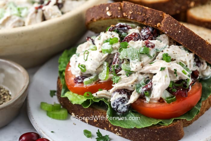 Turkey salad on bread on a plate