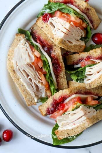 Turkey sandwich on a white plate with a black rim