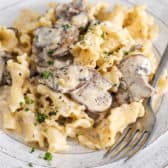 Campanelle With Creamy Mushroom Sauce on a plate with a fork
