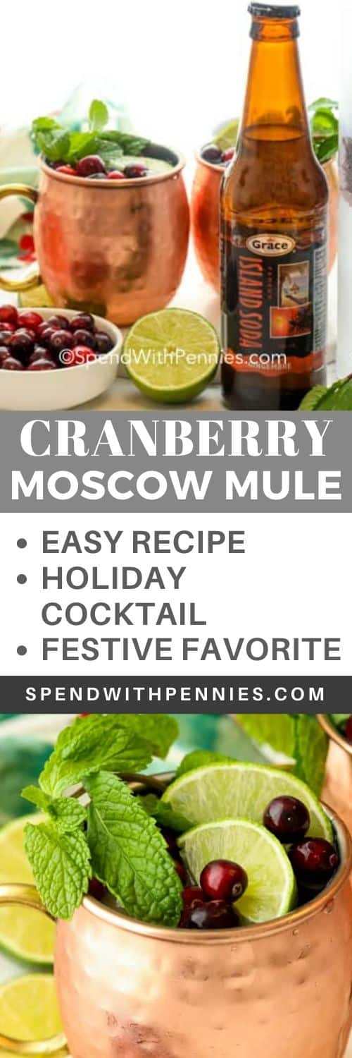 Top photo - ingredients to make a Cranberry Moscow Mule. Bottom photo - Two Cranberry Moscow mules in copper mugs topped with mint sprigs, lime slices, and cranberries.