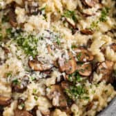 Mushroom risotto in a serving Bowl garnished with cheese and parsley