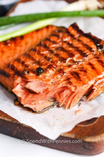 Salmon Marinade with a bite from it close up