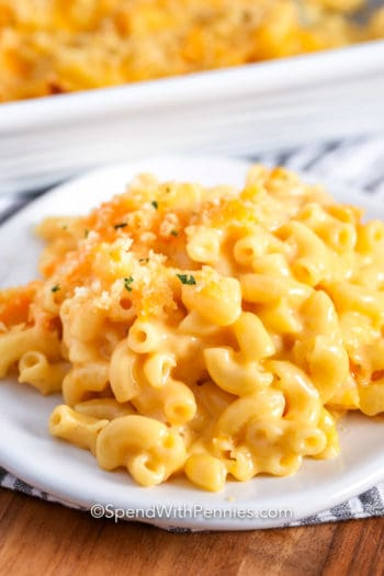 Velveeta Mac and Cheese on a white plate