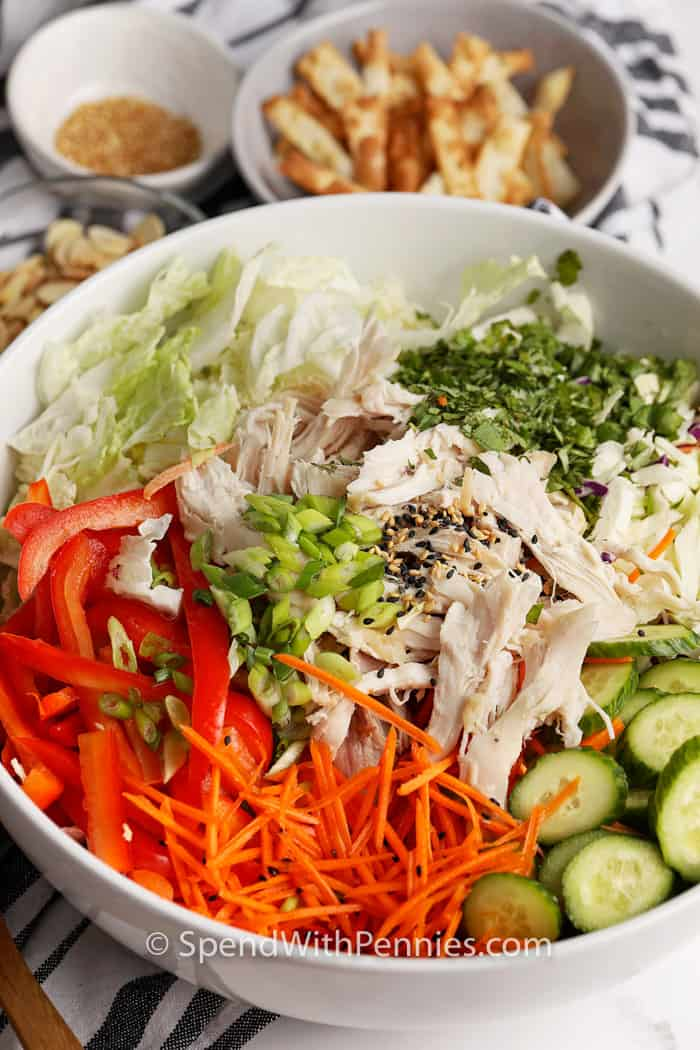 Asian Chicken Salad ingredients in the bowl