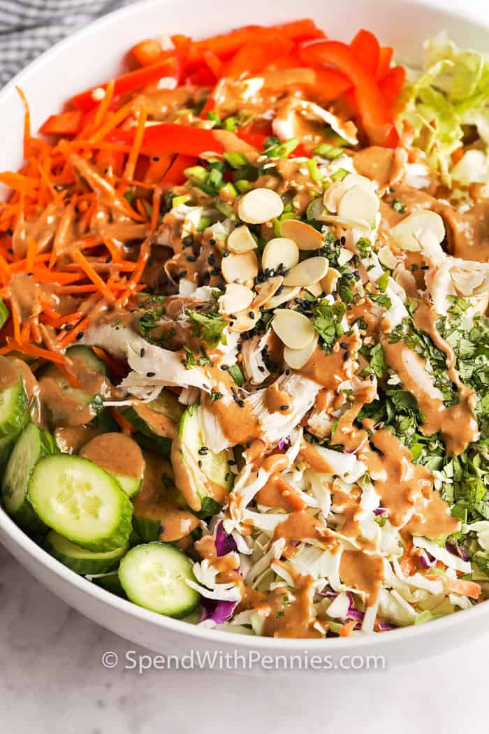 Asian Chicken Salad drizzled with sauce