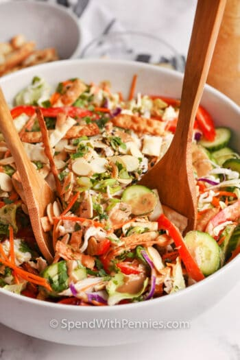 Asian Chicken Salad with serving spoons