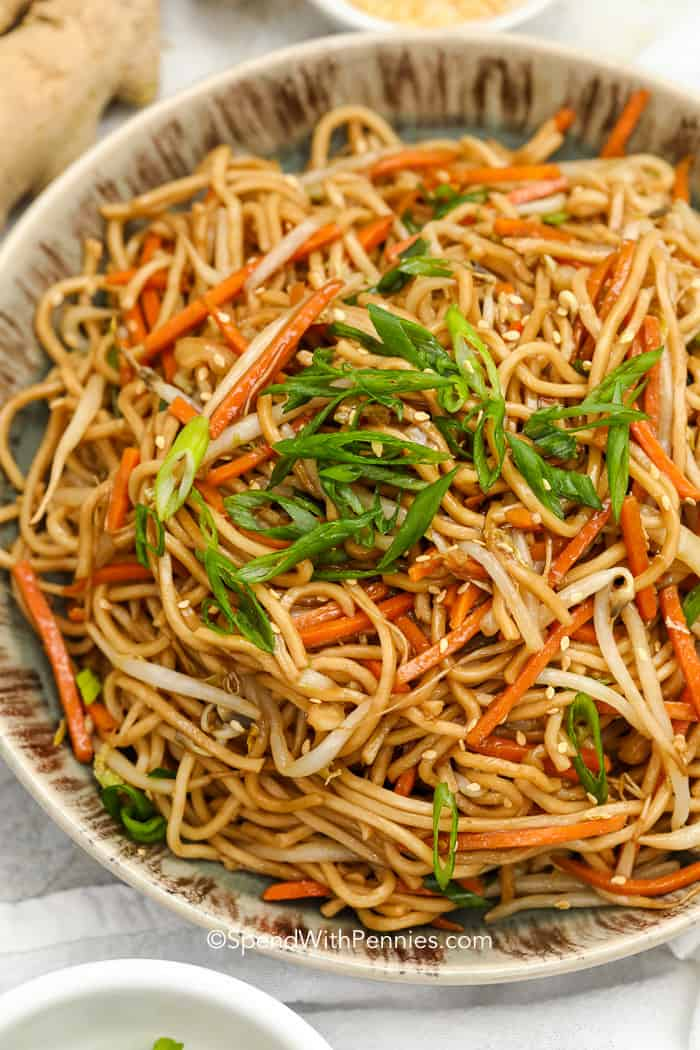 Bowl of Chow Mein with green onions