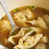 Spoonful of Homemade Wonton Soup