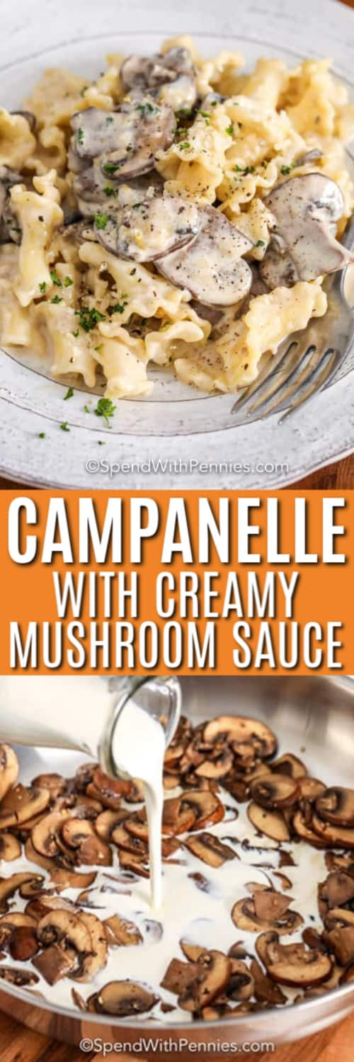 Campanelle with Creamy Mushroom Sauce on a plate with a title