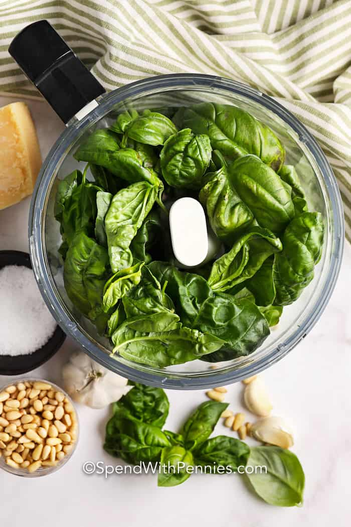 pesto ingredients in a food processor