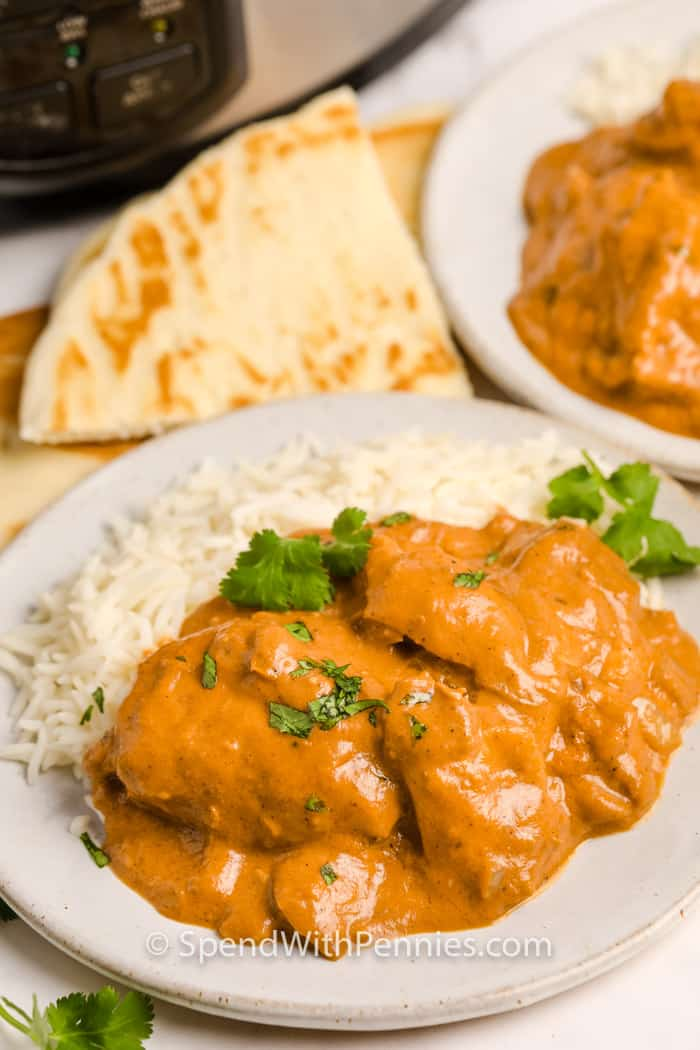 serving of Slow Cooker Butter Chicken with slow cooker behind it