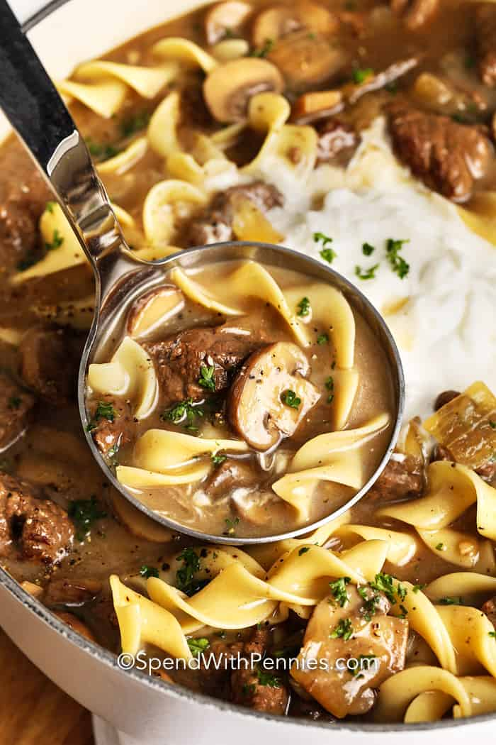 Beef Stroganoff Soup being served