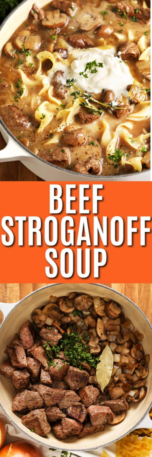 Beef Stroganoff Soup with title