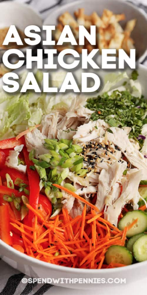 Asian Chicken Salad ingredients in a bowl with title