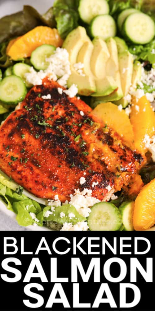 Blackened Salmon Salad closeup with feta cheese , oranges , avacado and cucumers and writing