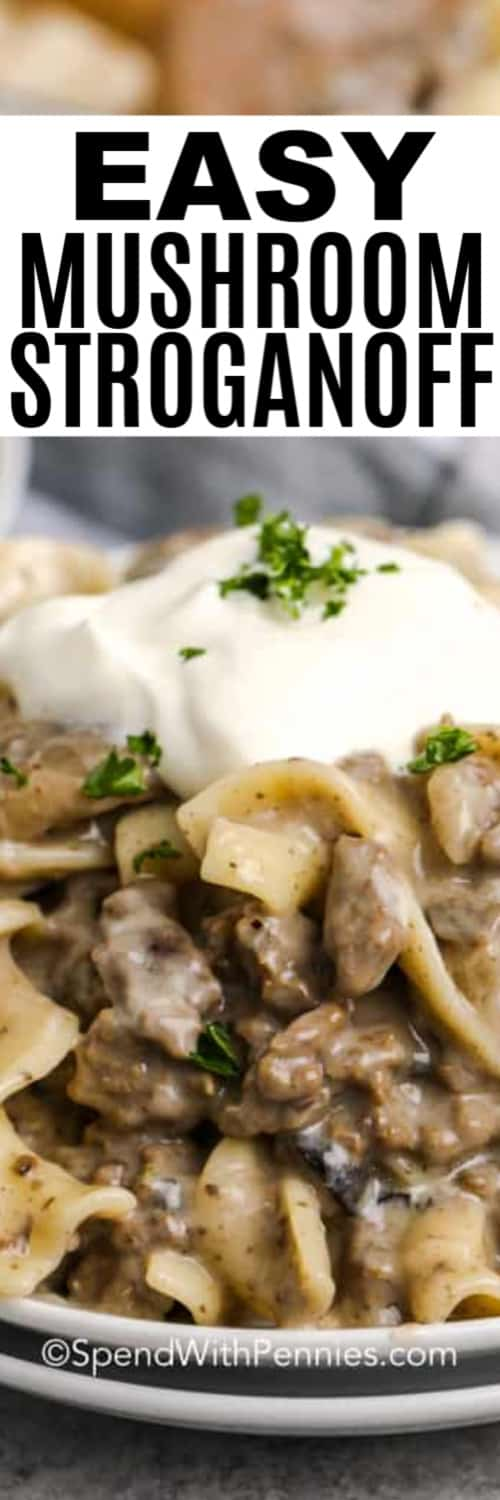 A serving of mushroom stroganoff with writing