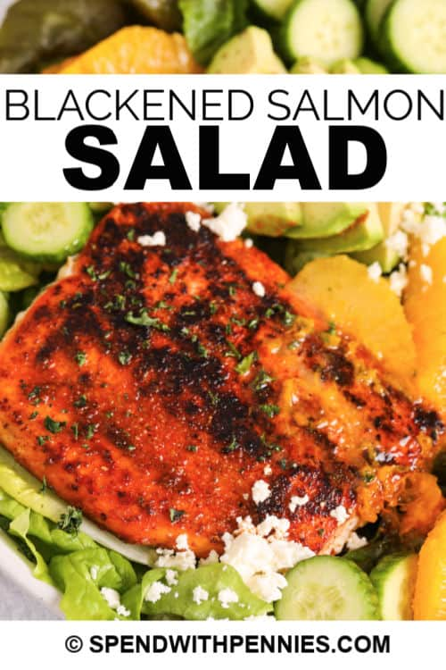 closeup of Blackened Salmon Salad with writing