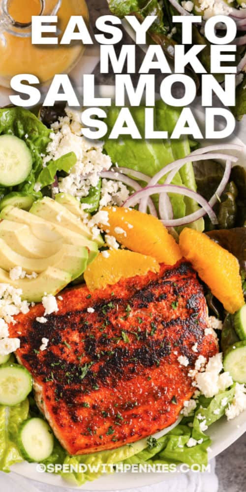closeup of Blackened Salmon Salad and title
