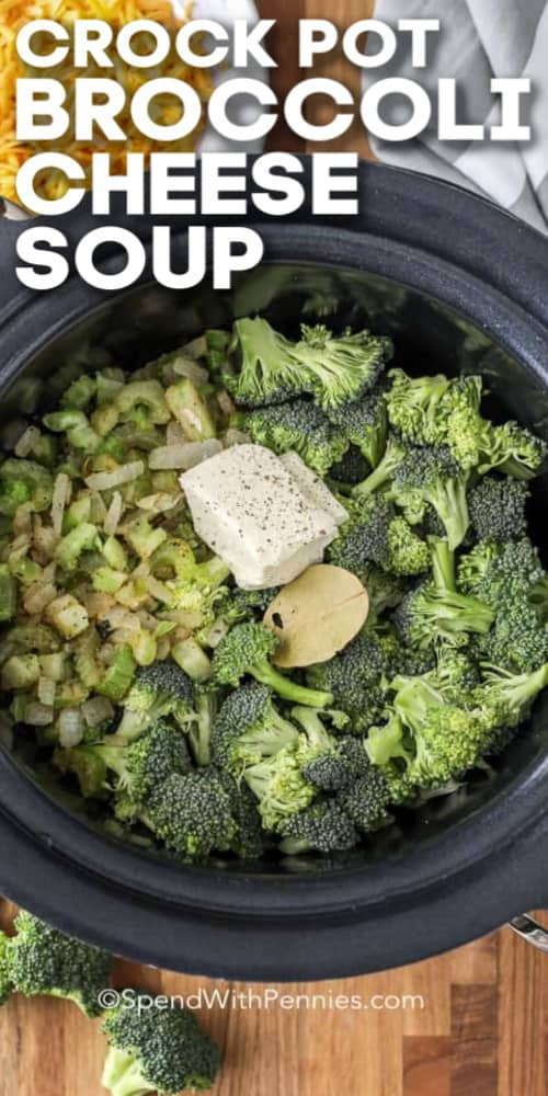 A crock pot filled with broccoli and vegetables ready to make slow cooker broccoli cheese soup