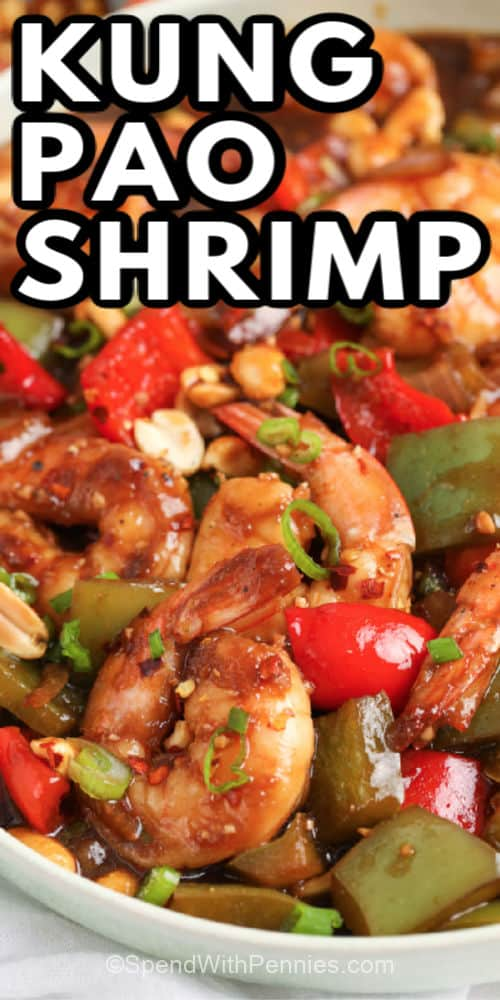 Kung Pao Shrimp close up in a white bowl with writing